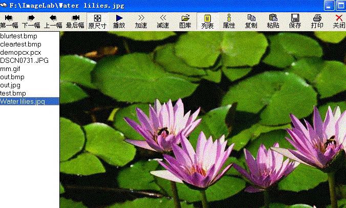 图像处理软件(ImageLab)截图2