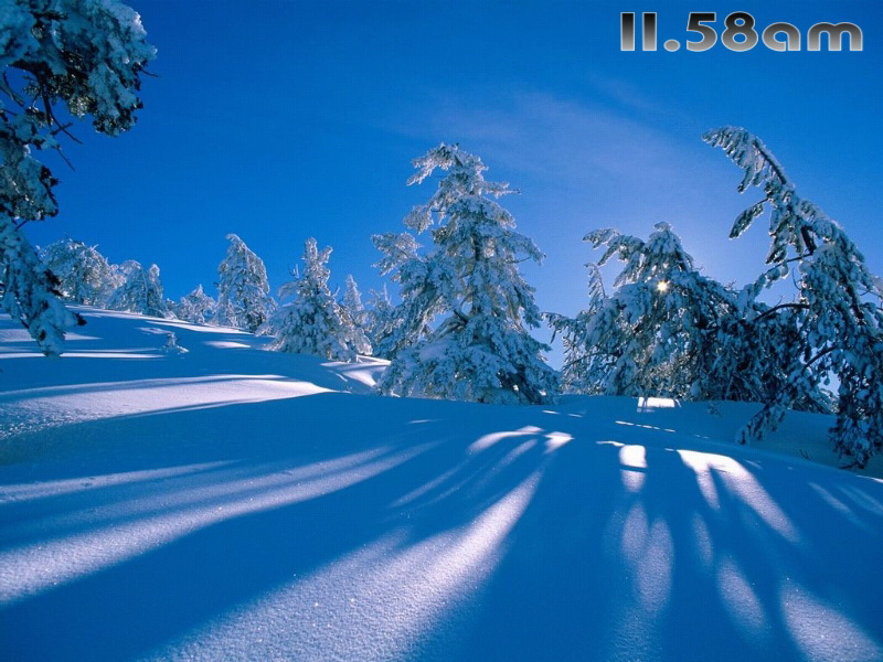 Winter Landscapes Free Screensaver截图1