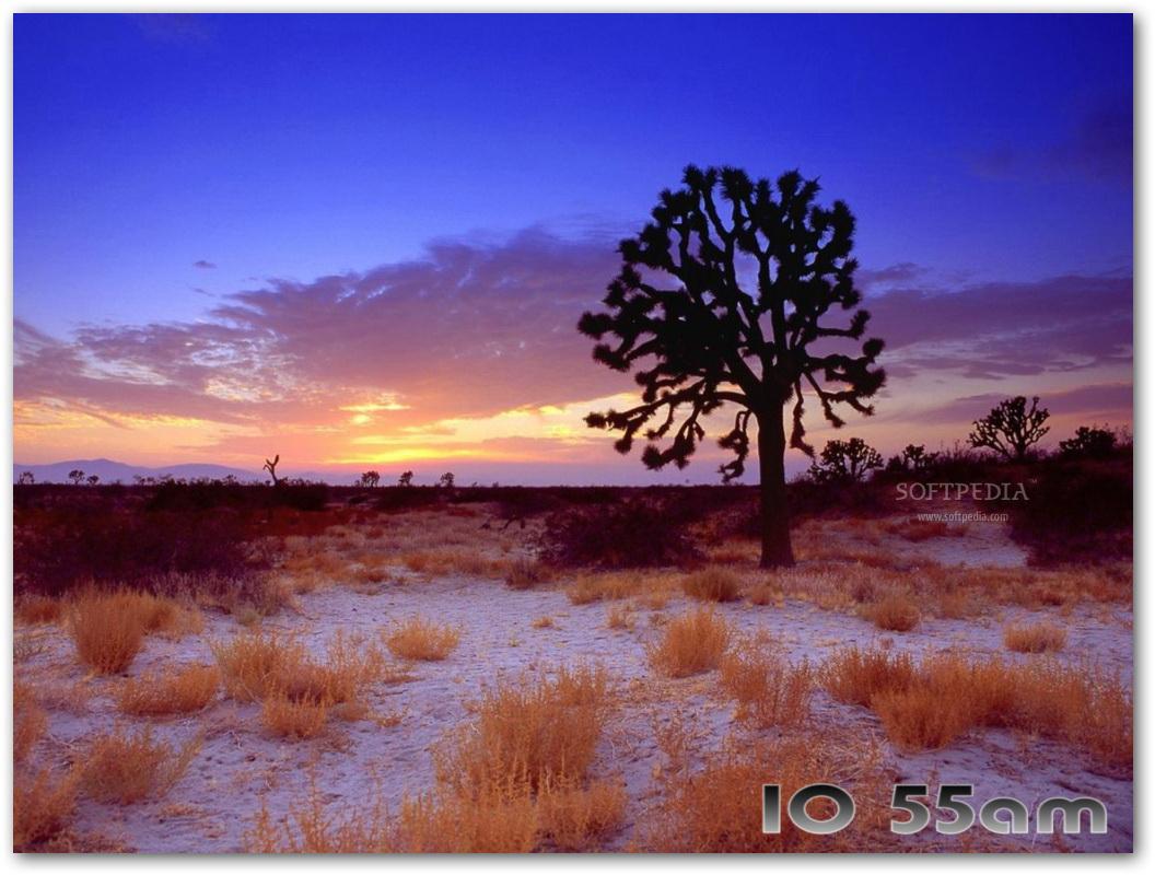 Hot Deserts Free Screensaver截图1