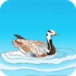 水鸭子生活馆