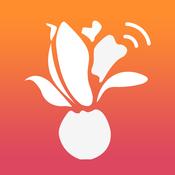 爱上海app