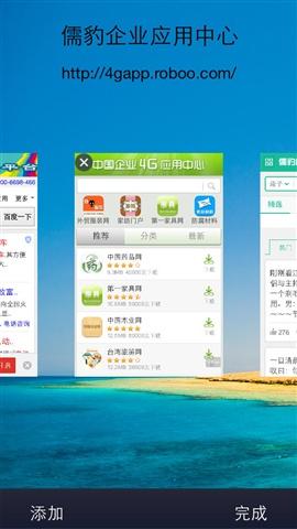 儒豹4G浏览器截图4