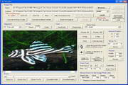 X360 Exif & Tiff Tag Viewer ActiveX OCX段首LOGO