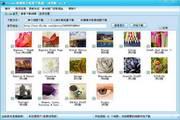 flickr相册照片批量下载器 2015.14