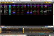 上海金决策分析系统
