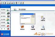 降龙990会计核算软件