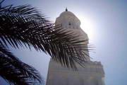 Various Mosque Screensaver