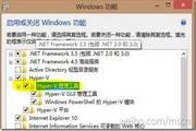 Windows 8 Release Preview远程服务器管理工具(64bit)