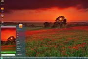 红色花海桌面主题