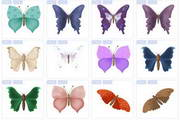 花丛仙子蝴蝶图标