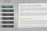灰色竖排网站flash导航条