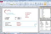 SmartVizor 可变数据批量打印软件