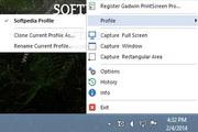 Gadwin PrintScreen Pro