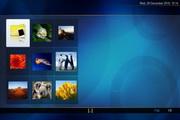 在线视频录制软件 NextPVR