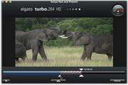 Turbo.264 HD for MAC