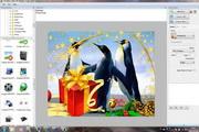 Free VISCOM Photo Collage