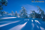 Winter Landscapes Free ScreensaverLOGO