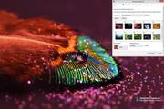 Feather Drops Windows 7 Theme