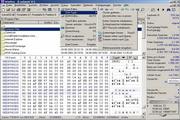 代码编辑器 WinHex