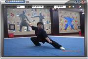 陈式太极拳教学软件