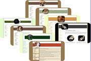 Pet Web Elements