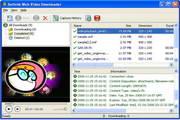 Sothink Web Video Downloader 2.0