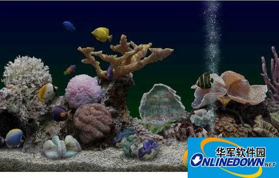 海底世界动态屏保截图1