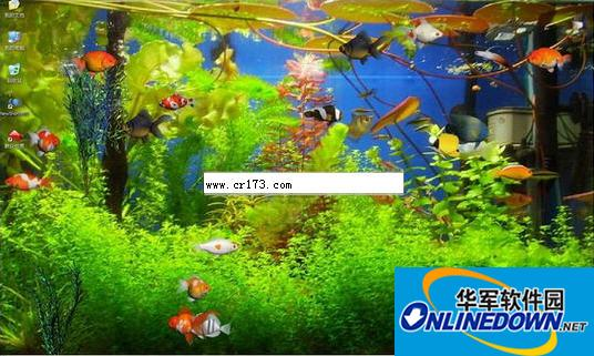 3D水族箱热带鱼动态桌面壁纸截图1