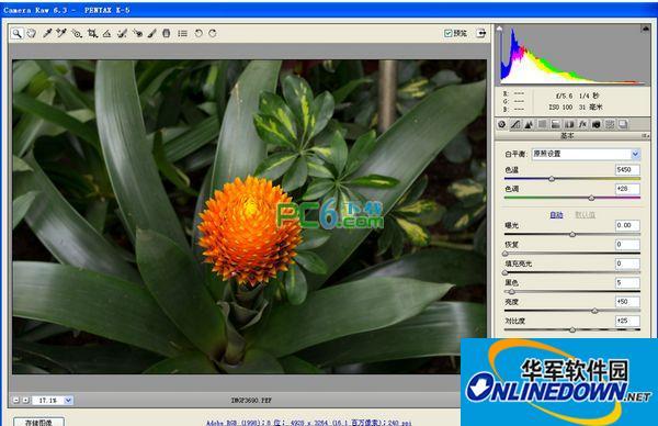 raw格式编辑软件(camera raw)