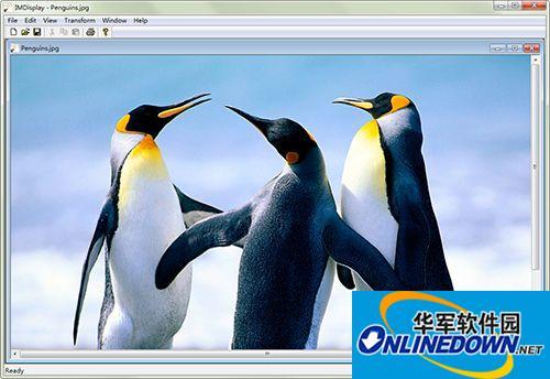 ImageMagick(图像合成软件)