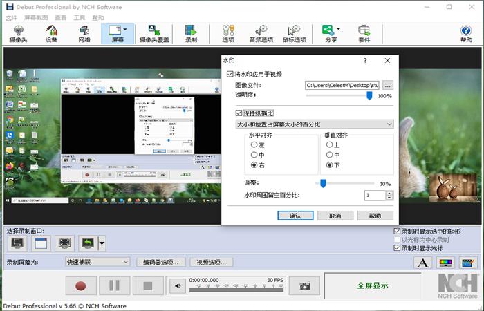 NCH Debut视频录制和屏幕捕捉录屏截图软件截图3