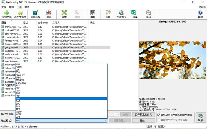 NCH Pixillion图像照片格式转换软件截图1