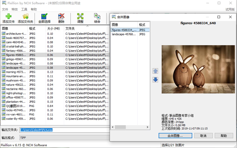 NCH Pixillion图像照片格式转换软件截图2
