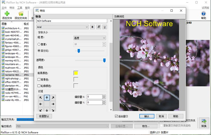 NCH Pixillion图像照片格式转换软件截图4