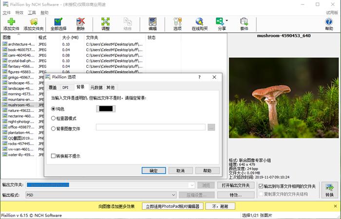 NCH Pixillion图像照片格式转换软件截图6