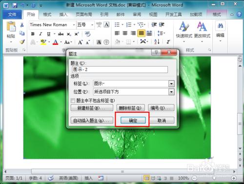 Microsoft Word 2010截图3