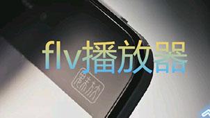 flv是什么格式