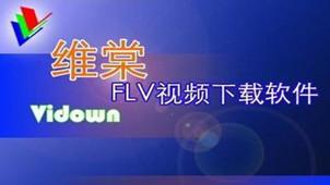 维棠视频下载软件