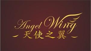 天使之翼2攻略