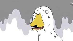 鸭子生活专区