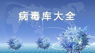 最新网络病毒大全