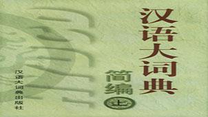 汉语大辞典专题