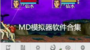 md模拟器软件合集