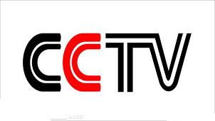 cntv下载