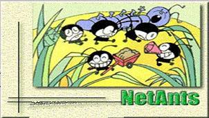 网络蚂蚁专题