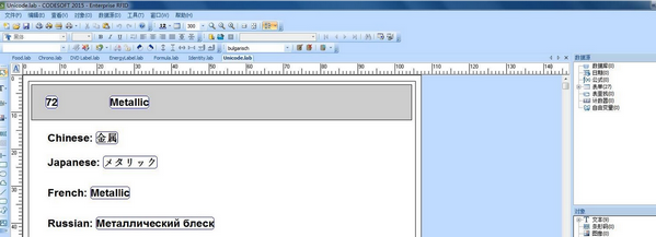 Codesoft截图