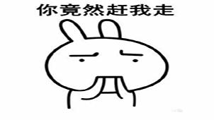 兔子表情专题