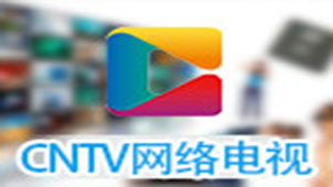 cntv客户端下载专题