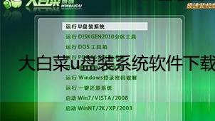 大白菜u盤裝系統軟件下載