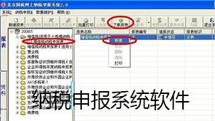 纳税申报系统软件